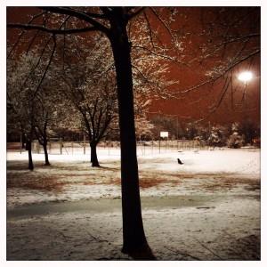 Winterreise#2