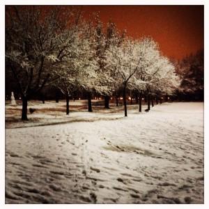 Winterreise#3